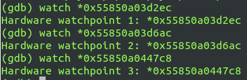 gdb-watchpoints-ammo.png